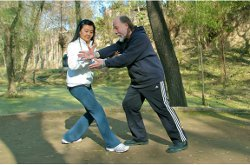 Northern_Wu_Style_Push_Hands